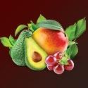 Ovocná rada